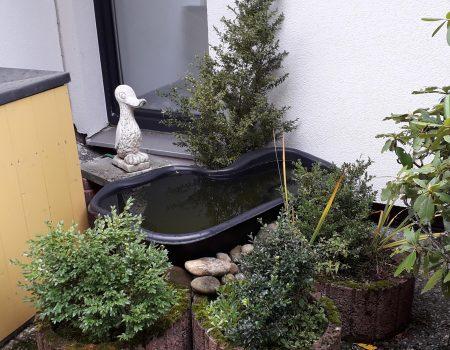 Dachterrasse mit Teich