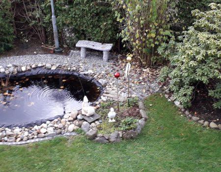 Teich im Garten-EG